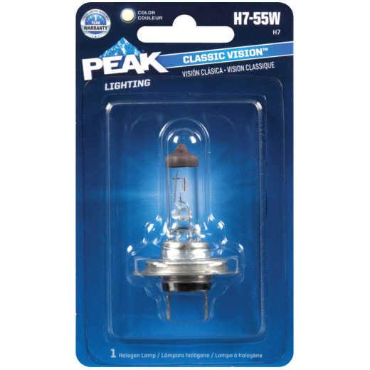 Light Bulbs & Headlights
